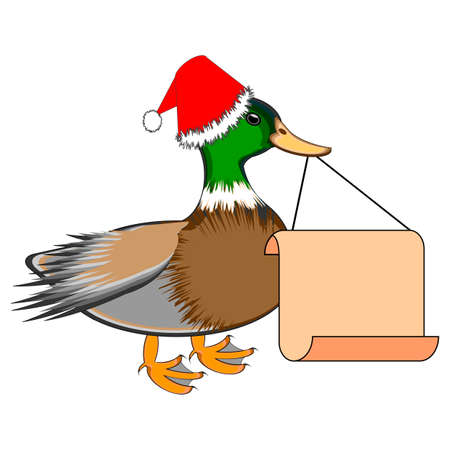a christmas duck with a big blank paper in his beak vector art illustration - Christmas Duck