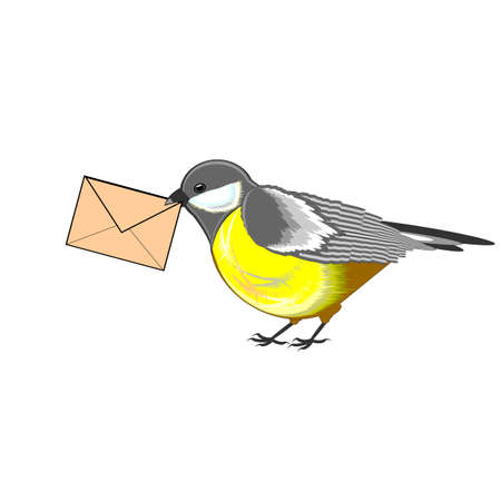 tomtit: A cute titmouse with a letter in its beak. Vector-art illustration isolated on a white background