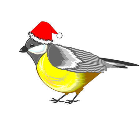 A cute Christmas titmouse isolated on a white background. Vector-art illustration