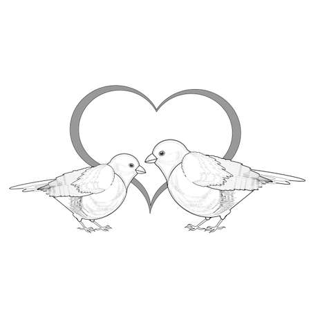 A monochrome sketch of a couple of birds with a heart. Vector-art illustration on a white background Vector