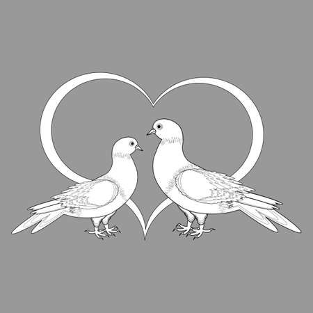 A monochrome sketch of two doves and a heart. Vector-art illustration Vector