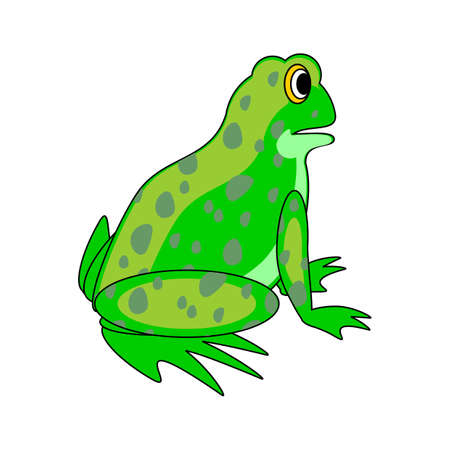 sideview: A funny cartoon green frog. Design colorful vector-art illustration isolated on a white background Illustration