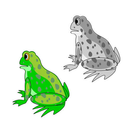 sideview: A funny cartoon frog. Design vector-art illustration isolated on a white background. Colorful and monochrome versions