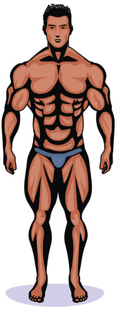 bodybuilder Illustration