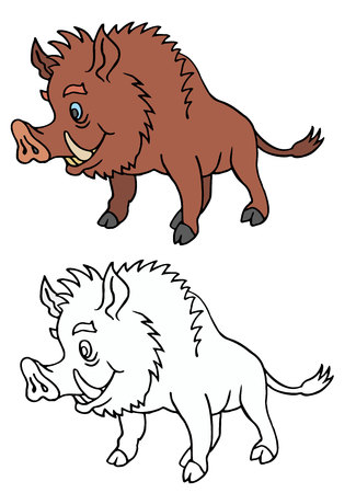 coloring pages for kids with animals, boar