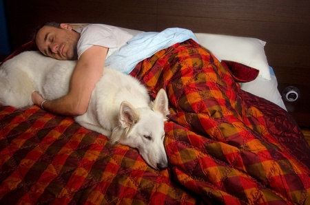 man is sleeping into the bed with a dog Standard-Bild
