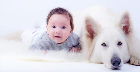 Sweet baby boy and his friend, a white swiss shepherd dog