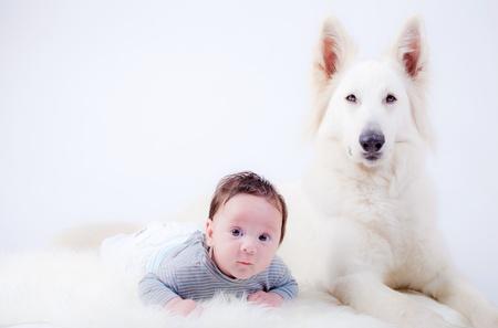 Sweet baby jongen en zijn vriend, een Zwitserse Witte Herder