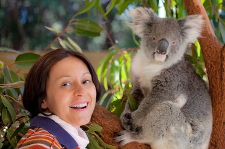perth: Woman with sweet koala in western Australia