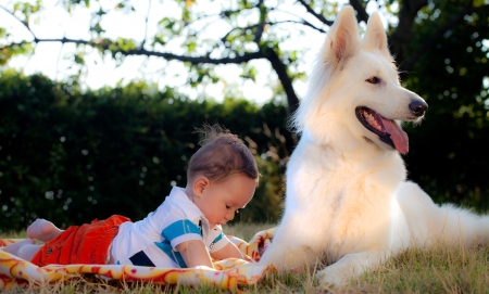 sweet baby with a dog in a garden photo
