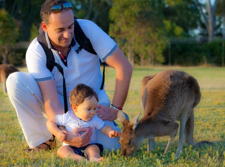 sweet kid and a kangaroo photo