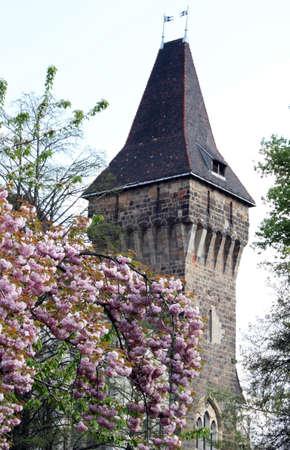 The Tower of Vajdahunyad castle, Budapest main city park Фото со стока