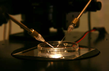 Two needle and a glass bowl on the table microscope