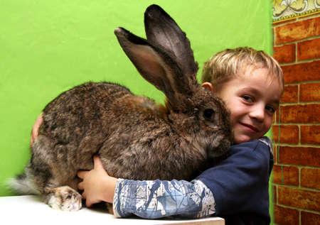 Fair-haired boy hugging gray rabbit at home