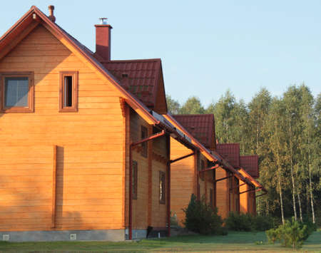 birchwood: A row of residential wooden houses and birchwood background