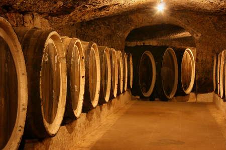 wine grower: Old wine barrels in a wine cellar