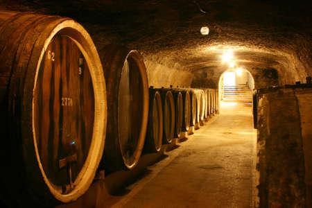 wine grower: BEREGOVE, UKRAINE - JUNE 28, 2016: Old wine barrels in a wine cellar