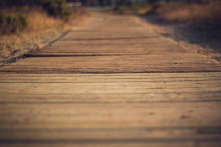 boardwalk trail: Boardwalk path cuts through sea oats on the Mediterranian coast in Almerimar, Spain