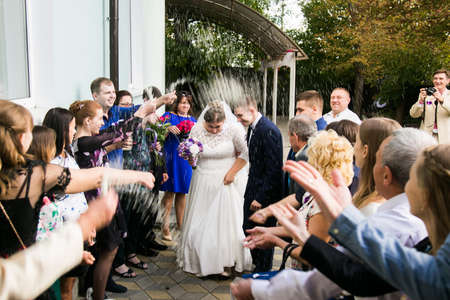 Lutsk, Volyn  Ukraine - September 16 2018: Just married walk among the guests in the rain of rice