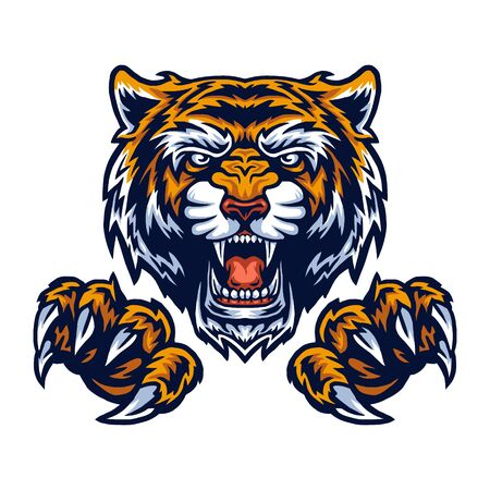 Vector illustration of tiger and claws 矢量图片