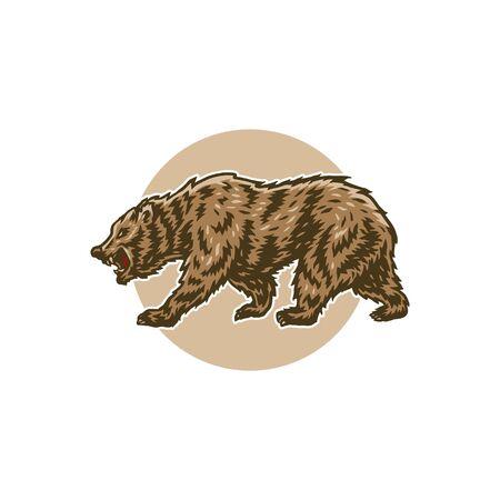 Vector illustration of bear, hand drawn line with digital color, vector illustration