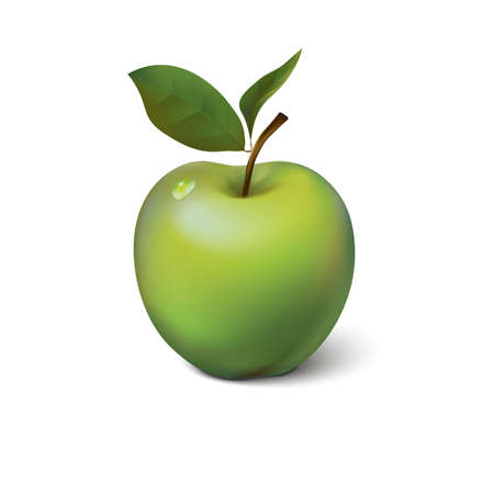 green apple isolated: Green apple isolated on background, contains meshes and transparency  EPS 10