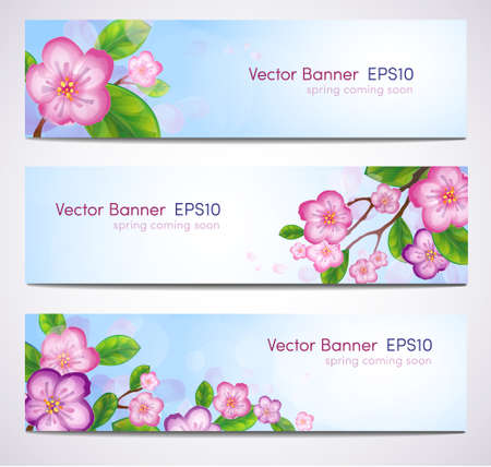 Banner with branches of blossoming tree  EPS 10  Illustration
