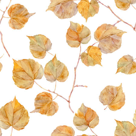 drawing paper: Vector watercolor leaf. Vintage template. Herbarium. Isolated on white. Autumn seamless pattern with leaf. Autumn theme.