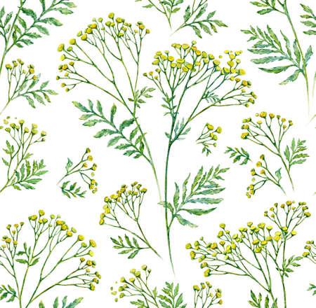 リーフ パターン背景、ボタニカル イラストとシームレスな花。水彩画。 写真素材