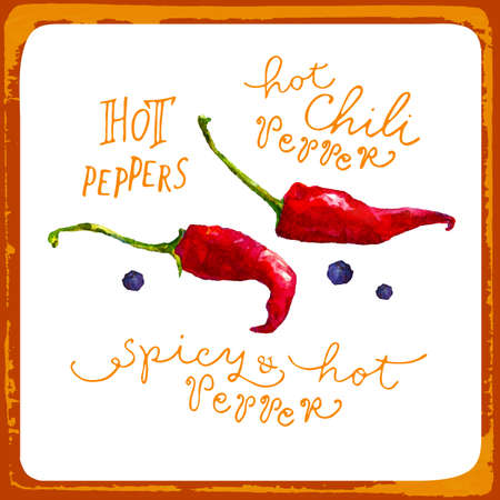 flavoring: Watercolor peppers. Vector illustration. Hand painting. Illustration