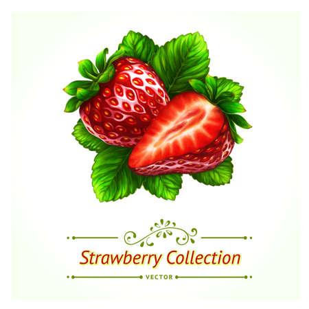 photorealism: Strawberry, leaves and berries isolated on white background. Realistic digital paint. Illustration