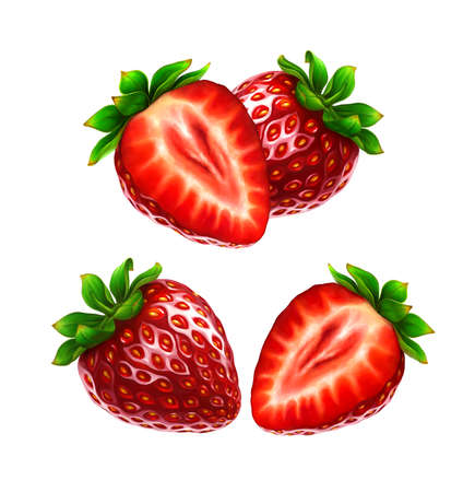 photorealism: Strawberry, leaves and berries isolated on white background. Realistic digital paint. Stock Photo