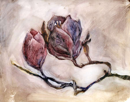 Magnolia branch. Oil on paper. Print for interior decor, packaging, greeting card, poster and other design. Фото со стока - 122310855