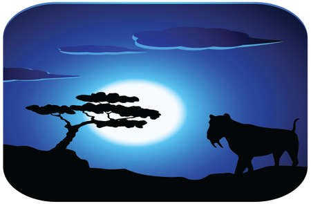 Leopard with sunrise Vector