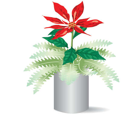flowers in pots illustration Vector
