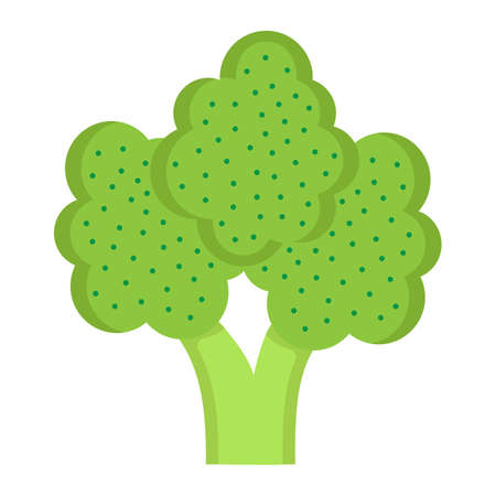 Broccoli flat icon, vegetable and diet, vector graphics, a colorful solid pattern on a white background, eps 10.
