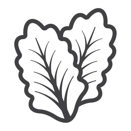 Lettuce line icon, vegetable and salad leaf, vector graphics, a linear pattern on a white background, eps 10.