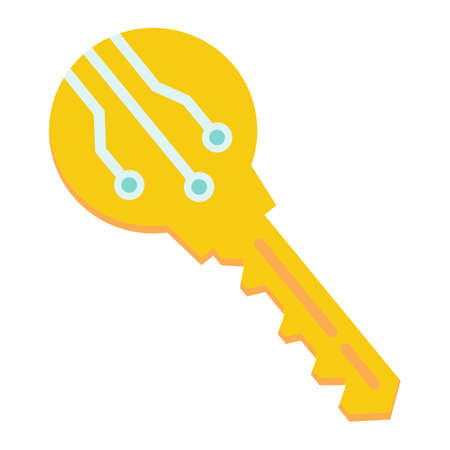 validation: Electronic key flat icon, security and access, vector graphics, a colorful solid pattern on a white background, eps 10.