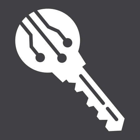 validation: Electronic key solid icon, security and access, vector graphics, a glyph pattern on a black background, eps 10.