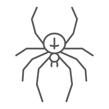 Spider thin line icon, animal and arachnid, halloween sign, vector graphics, a linear pattern on a white background, eps 10. Çizim
