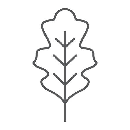 Oak leaf thin line icon, nature and botany, foliage sign, vector graphics, a linear pattern on a white background.