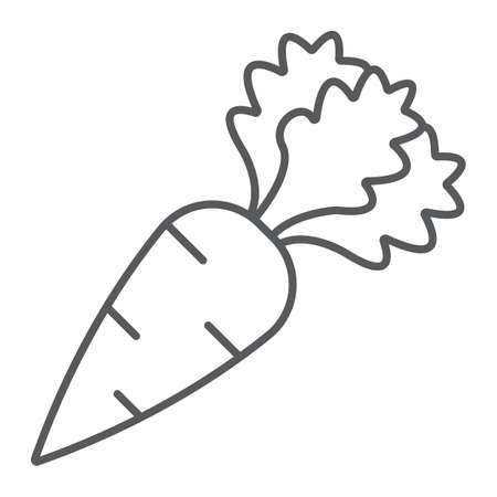 Carrot thin line icon, fruits and vegetables, veggie plant sign, vector graphics, a linear pattern on a white background. Vektorové ilustrace