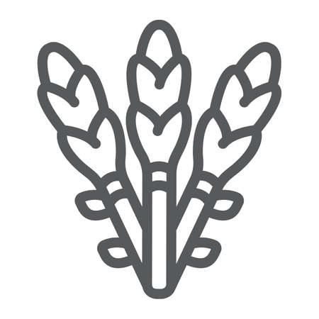 Asparagus line icon, vegetable and organic, vegetarian food sign, vector graphics, a linear pattern on a white background.