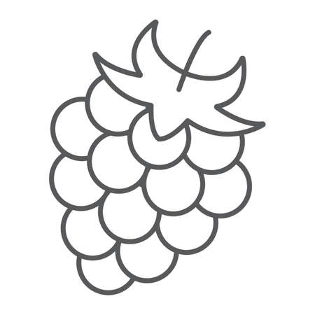 thin line icon, fruit and vitamin