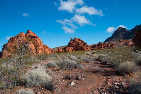 suelo arenoso: Landscape in Lake Mead National Recreation Area, Nevada, USA Foto de archivo