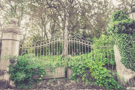 old silver metal gates overgrown with green vegetation and grass