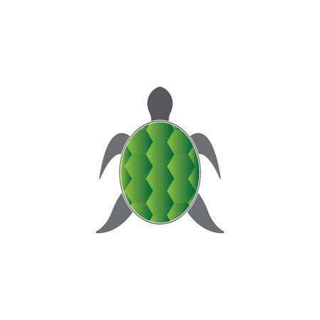turtle animal cartoon icon image vector illustration design 일러스트