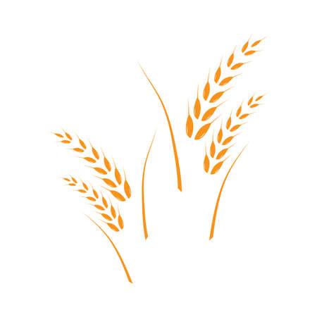 wheat Logo Template vector icon design