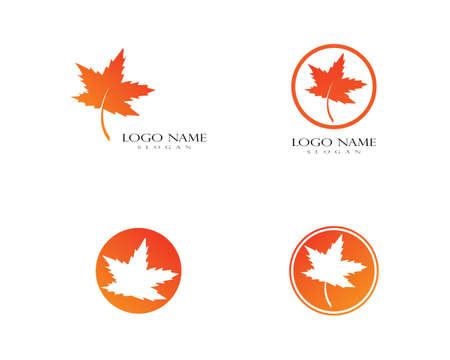 Oak Leaf Logo template vector illustration