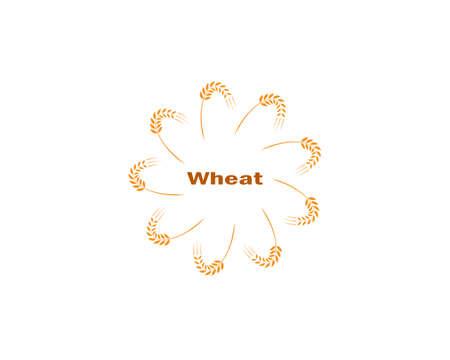 wheat Logo Template vector icon design Logo
